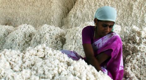 OGM e alimentazione: il parere di un Nobel per la chimica