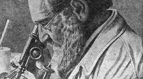 Ilya Mechnikov: emotività e genio scientifico