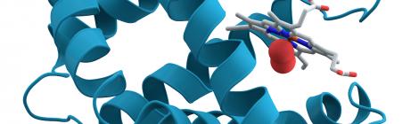 Le Nazioni Unite hanno dichiarato il 2014 Anno Internazionale della Cristallografia