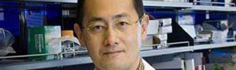 Staminali, il Nobel Yamanaka spinge l'acceleratore sulla ricerca