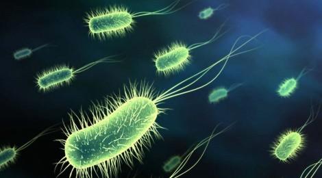 """Combattere i """"super-batteri"""" si può"""