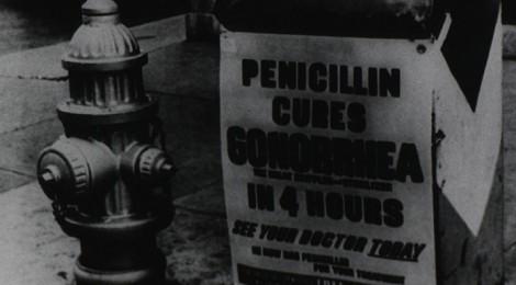 Alexander Fleming (1881-1955): la fortuna aiuta i curiosi