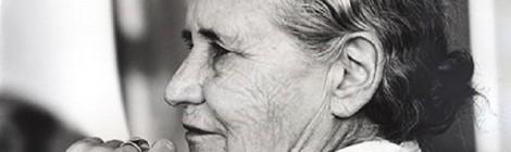 Lo Zimbabwe eredita la biblioteca personale di Doris Lessing
