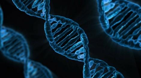 Modificare il DNA: un congresso per decidere i confini del lecito