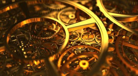 Anche le piante hanno un orologio (biologico)