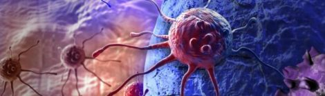 Il cancro ignora l'orologio biologico per sopravvivere