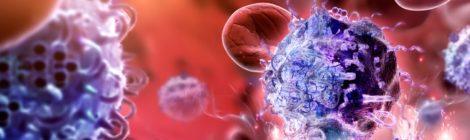 """Un """"profilo Instagram"""" del sistema immunitario per trattare il cancro"""