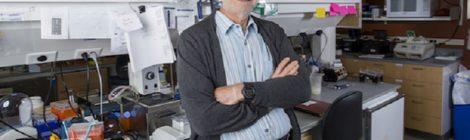 """""""Così lavorare con un Nobel ha ispirato la mia carriera"""": il racconto di Torben Jensen, allievo di Rosbash"""