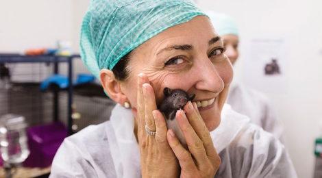 May-Britt Moser e il Gps cerebrale: curiosità da Nobel