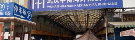 La Cina reclama il Nobel per la medicina